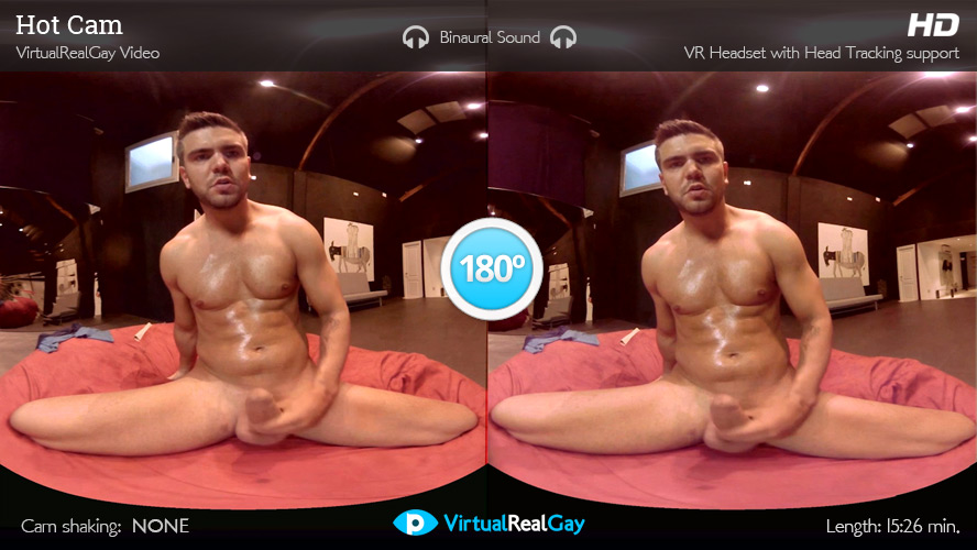 gay virtual porn Porn and virtual reality: a changing industry: Diversity and the future.