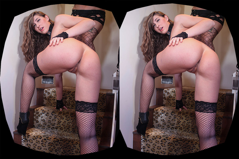 Backstage Pass Part 1 VR Porn