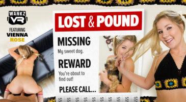 Lost & Pound