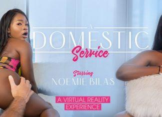 A Domestic Service