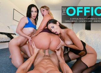 "Andreina Deluxe, Candice Dare, Diana Grace in ""The Office 6"""
